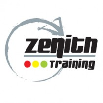 Zenith Training - Ladder Restraint System